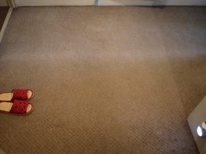 フローリング張替え前の汚れたカーペット